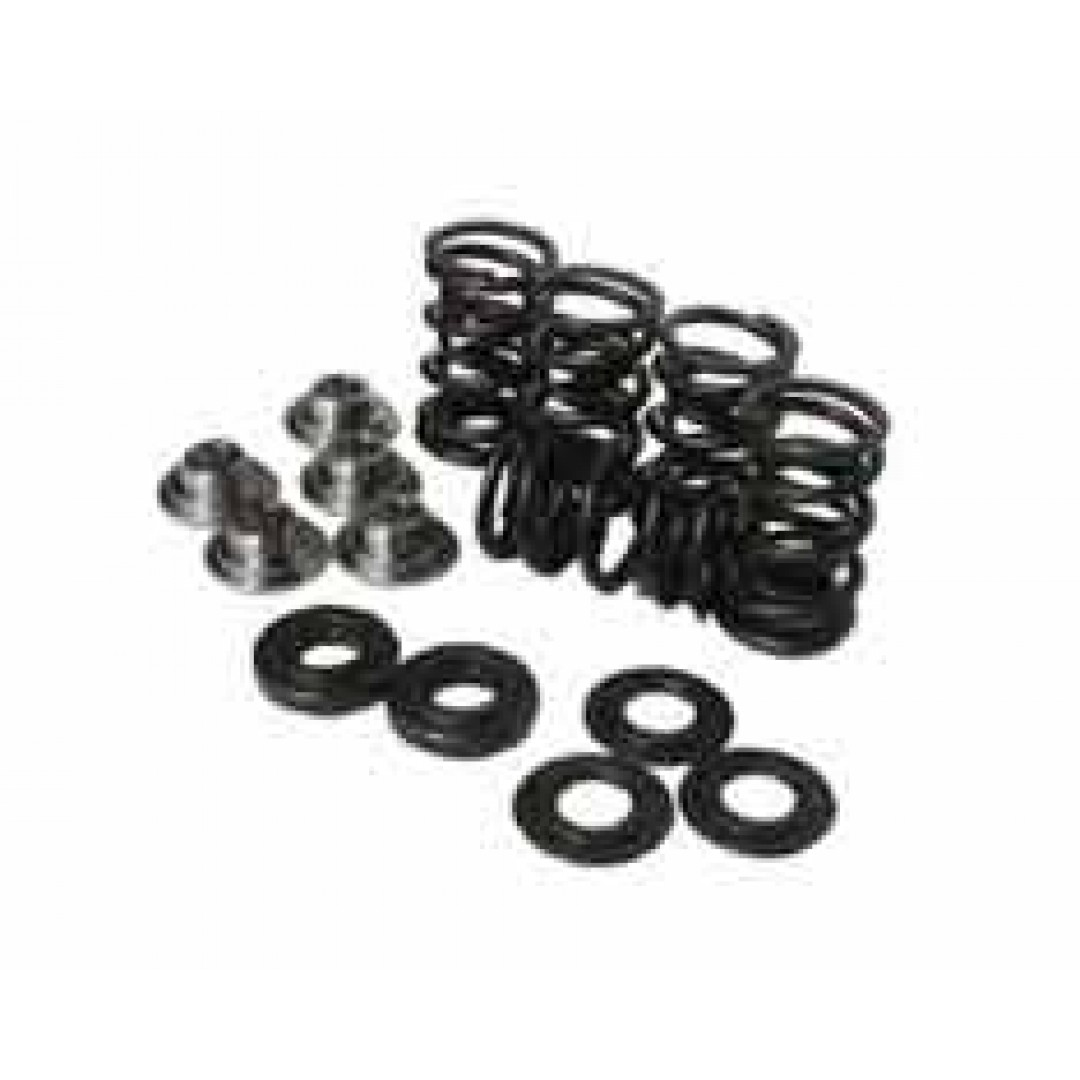 Hot Cams valve springs SKYFM660S2 Yamaha Raptor 660 2001-2005